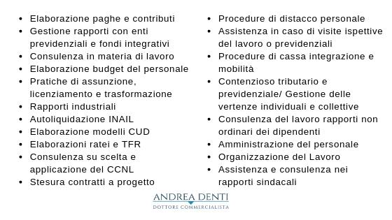 elenco servizi_lavoro e paghe
