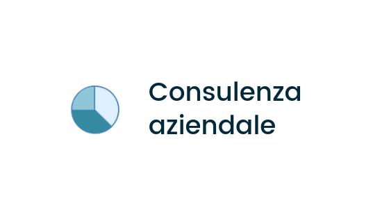 servizi_consulenza aziendale